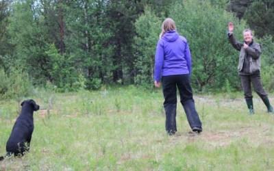 Apporteringskurs i Kiruna