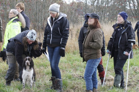 There was a lot of waiting, but luckily we had lovely company in other spaniel lovers!