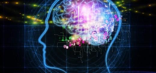 Computer Generated Value vs Human Brain