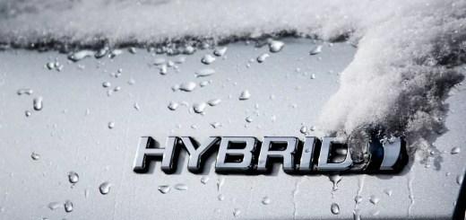 Hybrid Appraisals Survey Results
