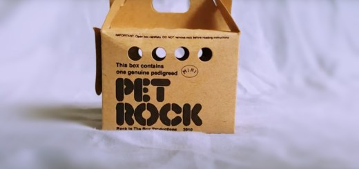 Are Technology Companies Selling Modern Version of a Pet Rock?