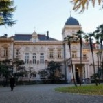 東京散歩:『旧岩崎邸庭園』の金色に輝く大銀杏