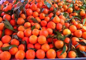 alimentation-hiver-saison-des-clémentines