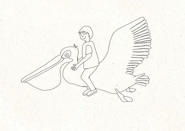dessiner facilement un pelican