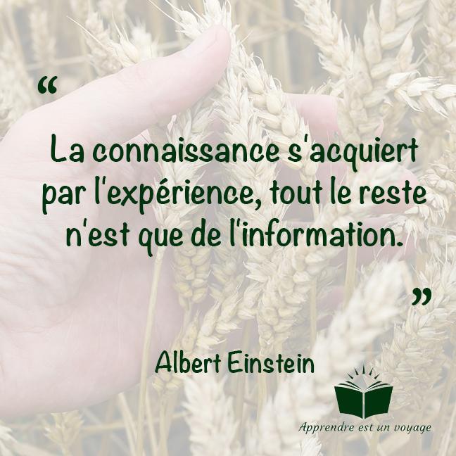 La connaissance s'acquiert par l'expérience, tout le reste n'est que de l'information