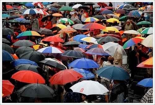 Foule de parapluies