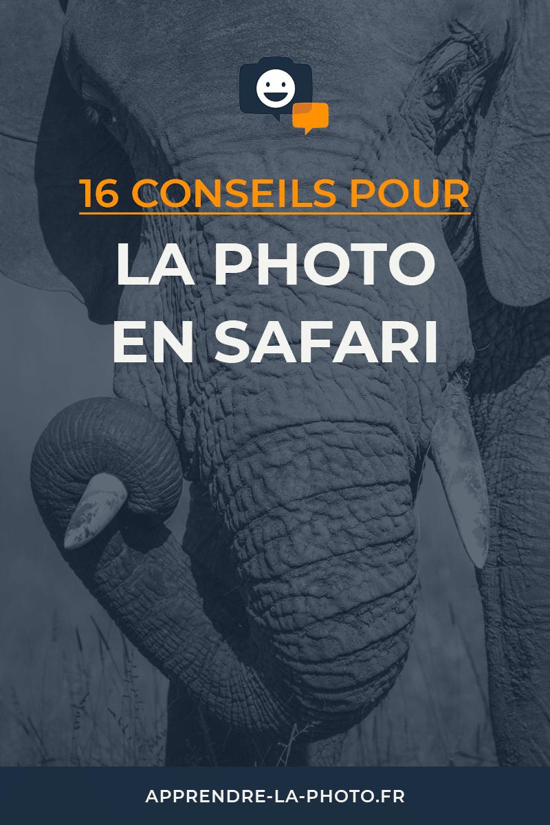 16 conseils pour la photo en safari