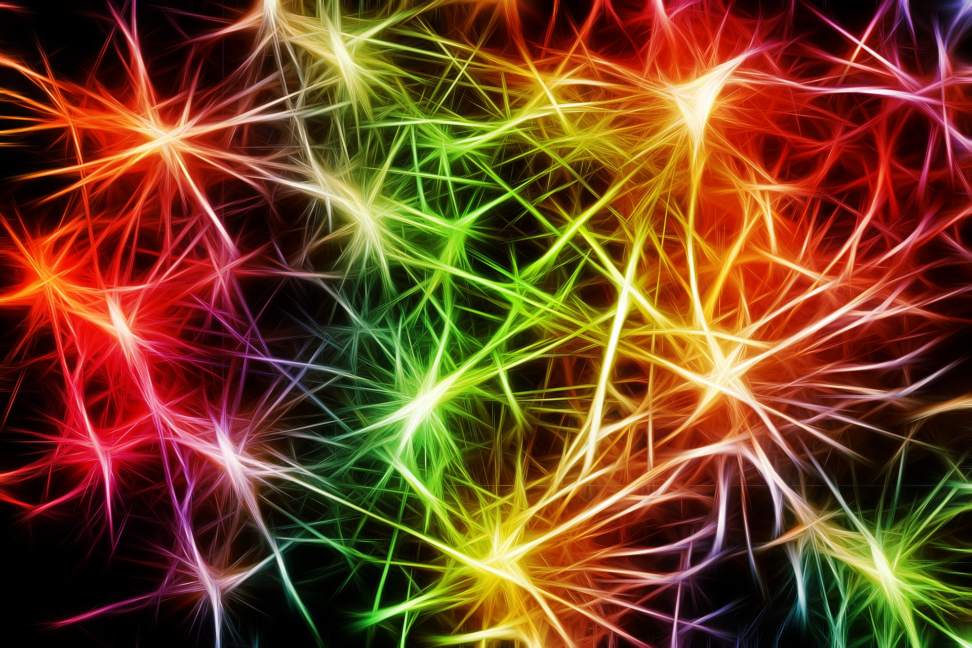 Cellules nerveuses colorées Image parGerd Altmann de Pixabay