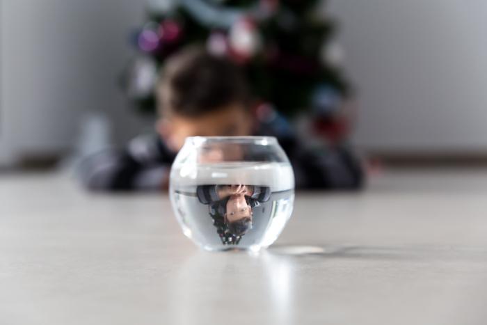 Utilisation de l'objet Photo-Boule d'eau
