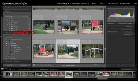 Ensembles de collections Lightroom