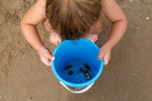 Vue en plongée pour vos photos d'enfant