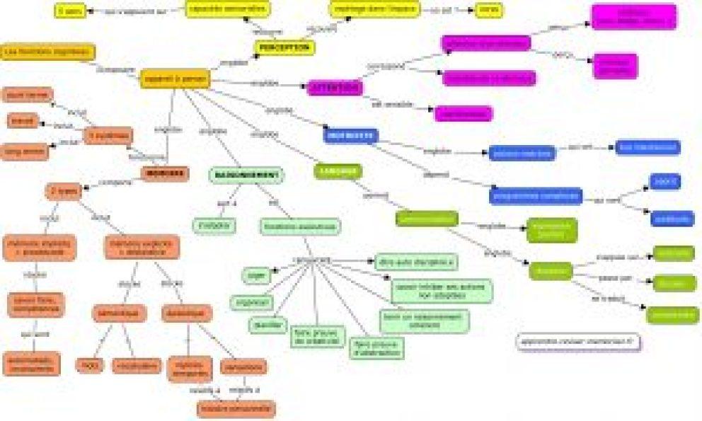 carte conceptuelle des fonctions cognitives