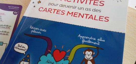 cahier apprendre faire cartes mentales