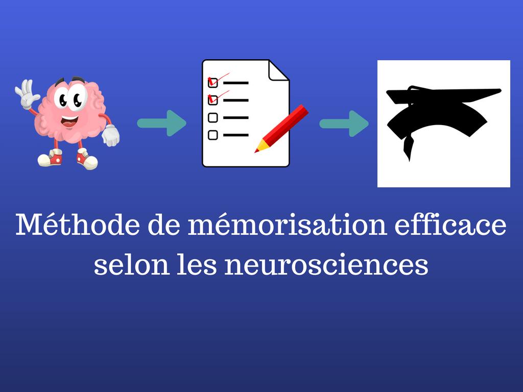 Méthode de mémorisation efficace selon les neurosciences