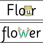 orthographe illustrée mots anglais