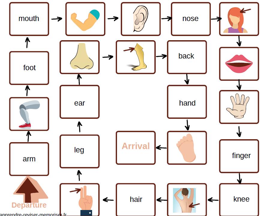 plateau jeu réviser mots vocabulaire courant anglais