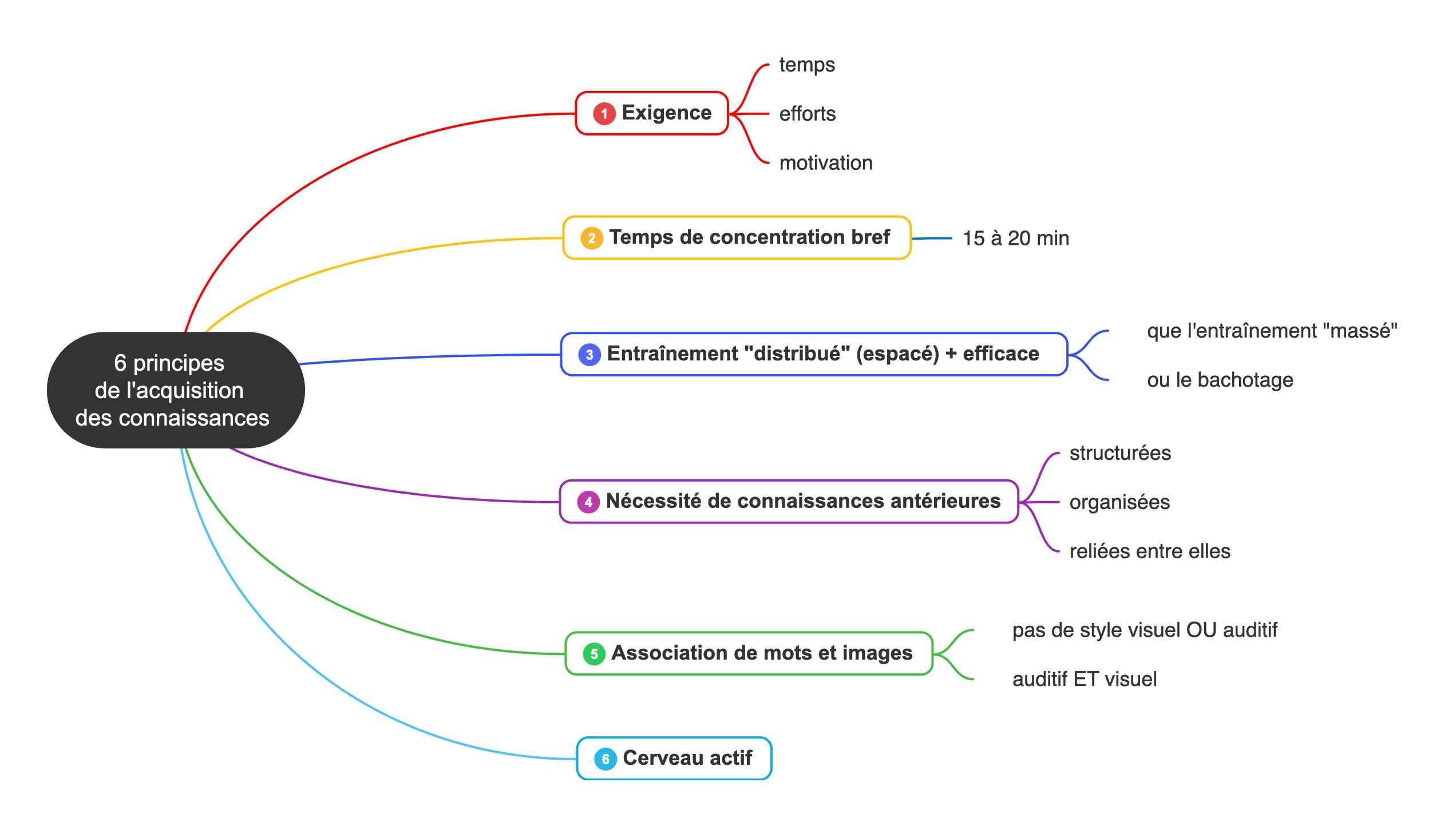 neuroscience principes apprentissage