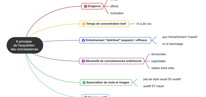 neuroscience principes apprentissage