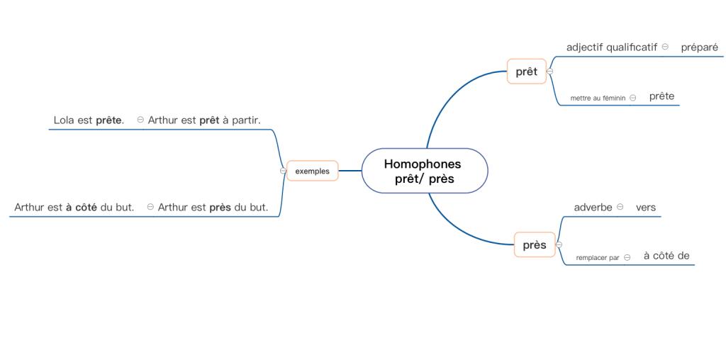 carte mentale homophones grammaticaux