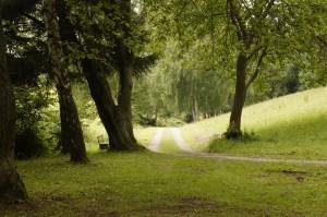environnement naturel, vivre libre