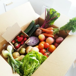 aliments sains : équilibre acido-basique