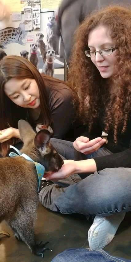 Apprendre l'anglais grâce au bénévolat…en Corée !
