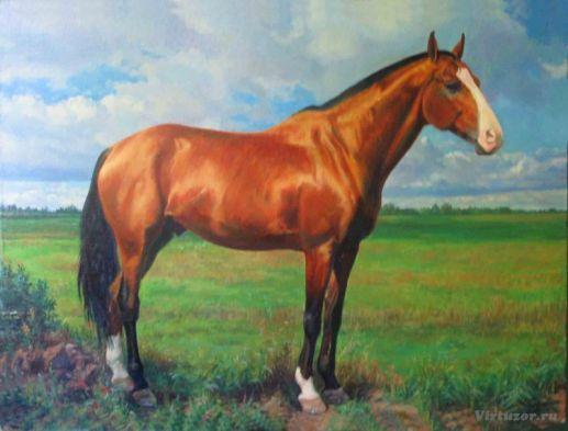 Priap. Portrait d'un étalon. 70x90 Huile sur toile