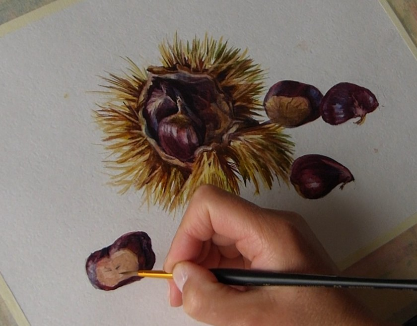 Comment commencer à peindre à l'aquarelle une nature morte avec les châtaignes. Le volume.