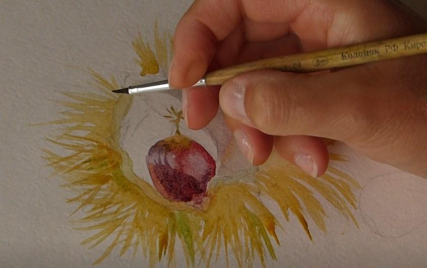 Comment peindre à l'aquarelle une nature morte avec les châtaignes