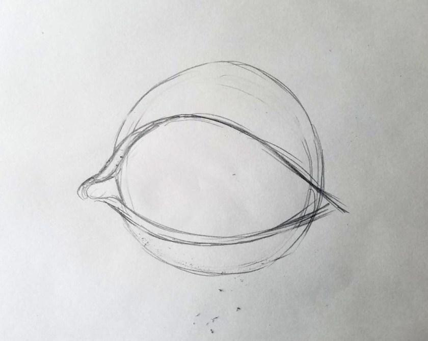 Comment dessiner des yeux. Les paupières avec leurs épaisseurs