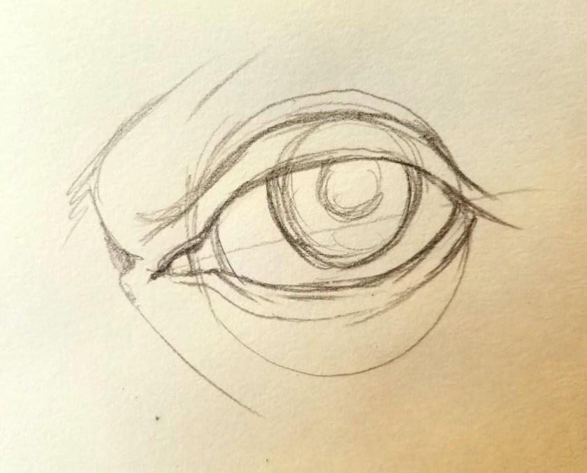 Comment dessiner des yeux. l'iris et la pupille