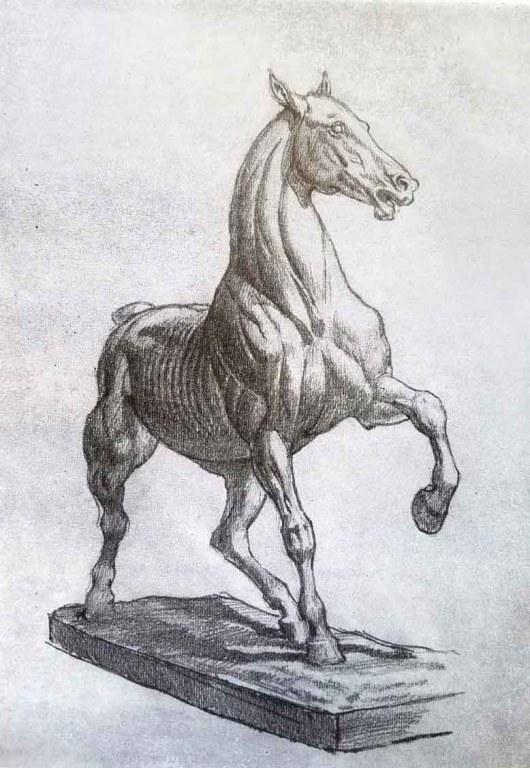 Comment dessiner un cheval. Dessin d'après une modelage du cheval de Peter Clodt.