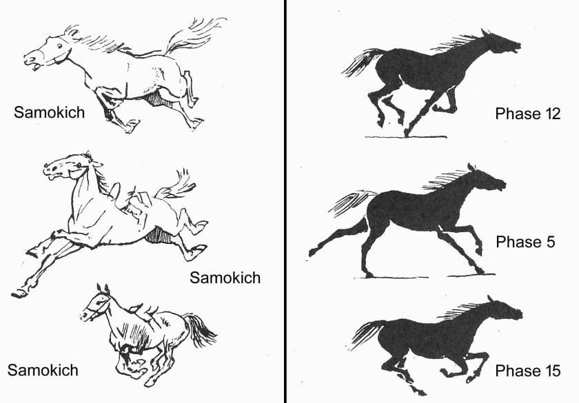 Sur ce schéma comparatif des phases du galop de cheval