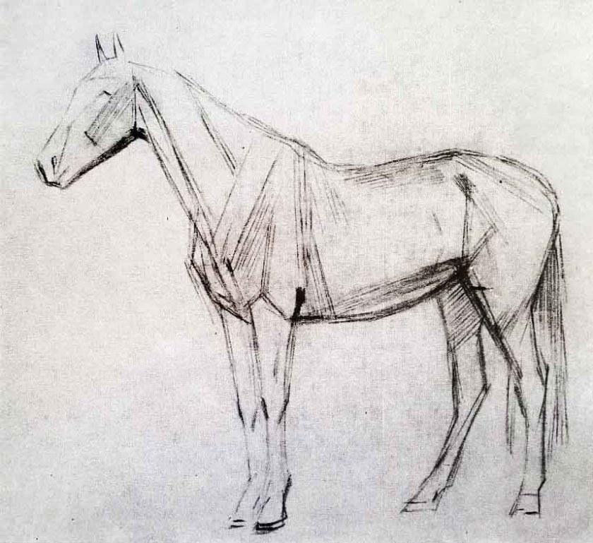 Comment dessiner un cheval. Etape 1.