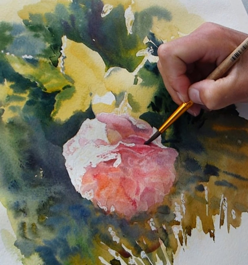 Comment peindre une rose. Fondus des pétales.