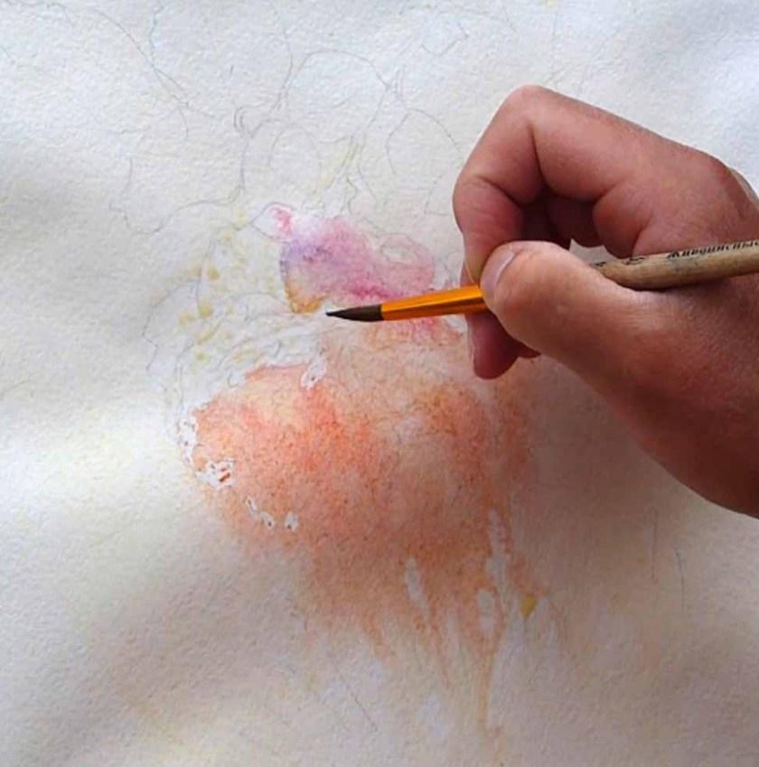 Comment peindre une rose. Fondus