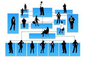 Environnement de contrôle - Organigramme
