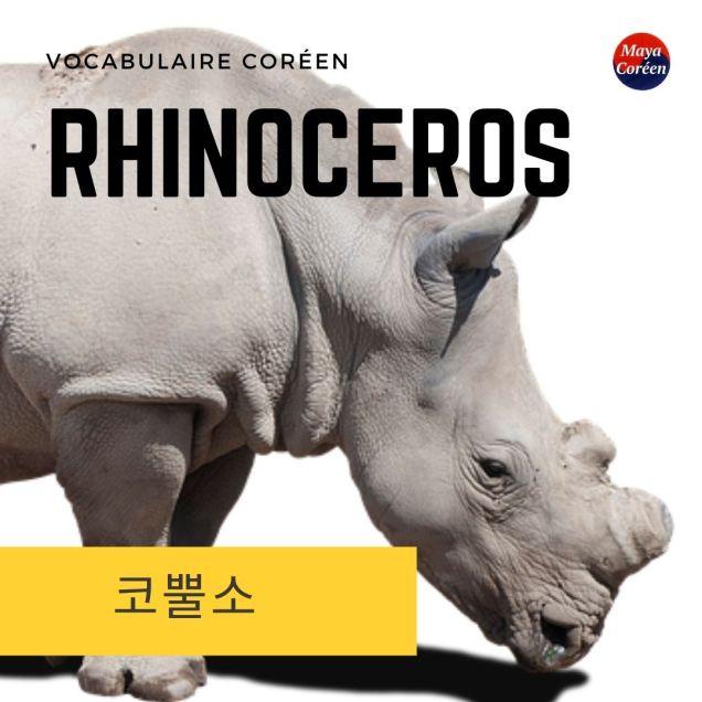 5-rhinoceros