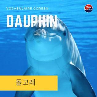 6-dauphin