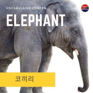 6-elephant