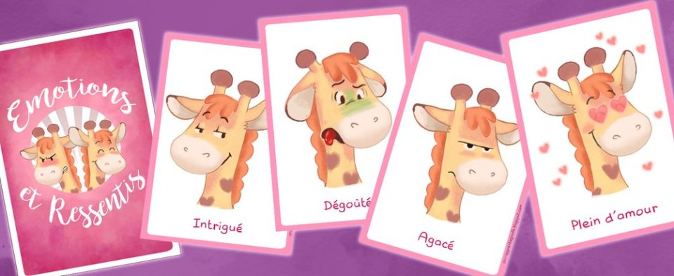 Cartes de 25 cartes sentiments illustrées