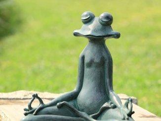 grenouille meditante - L'utilisation des sons pour se relaxer