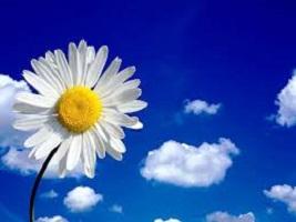 optimisme - Le printemps c'est maintenant... et l'optimisme aussi!