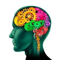 cerveau rouages petit - La pleine conscience.... convient-elle à tout le monde?