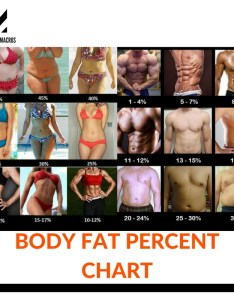 Different ways to measure body fat also percentage pictures calculator approve my macros rh approvemymacros