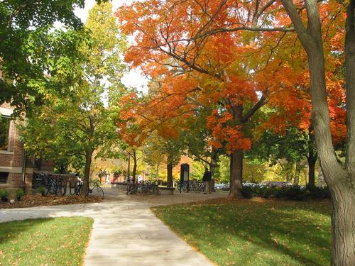 Fall In Michigan Wallpaper Carleton College Campus Photos Campus Scenery Fall Color