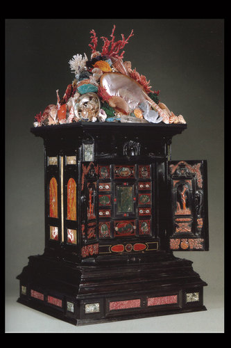 Display Cabinet with Shell and Mineral Assemblage
