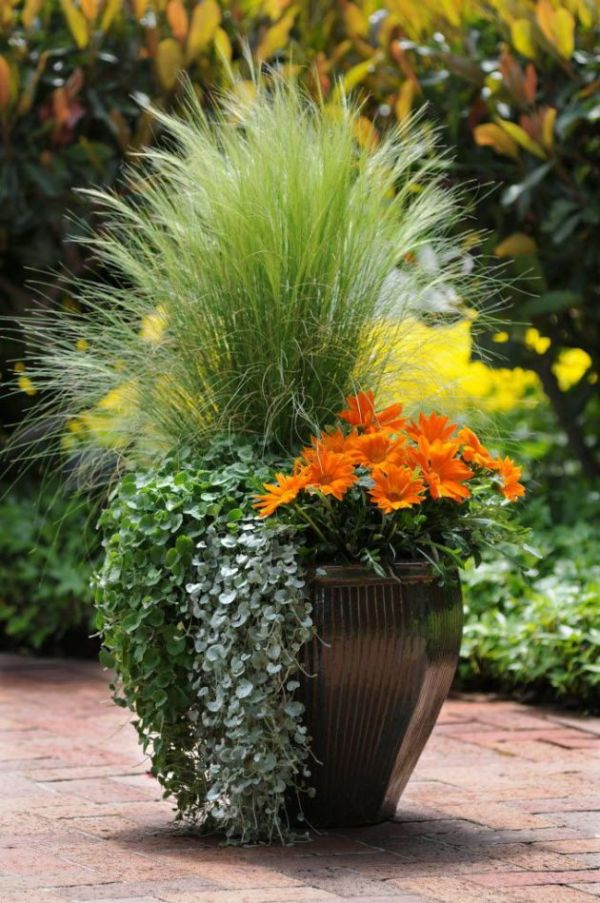 3 types of container garden styles