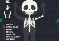 Das ist mein Körper – Anatomie für Kinder