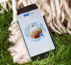 Messenger Tips and Tricks - Messenger Code